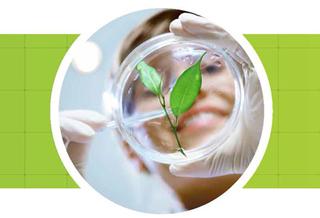 Lancement du Guide des emplois verts