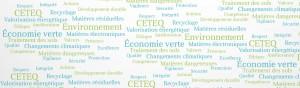 Législation, réglementation et autres documents normatifs sur les changements climatiques