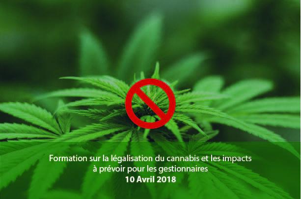 Participez à la formation sur la légalisation du cannabis et les impacts à prévoir pour les gestionnaires!